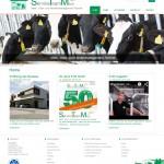 STM Website online